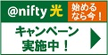 nifty光(ニフティ光)